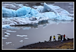 Photographing the icebergs