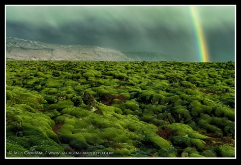 Moss Covered Lava Fields©Jack Graham