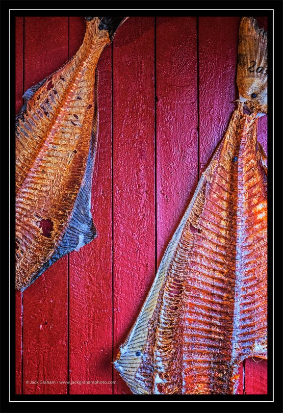 drying fish in Norway